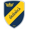 MGKS Drzewica