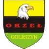 Orzeł Goleszyn